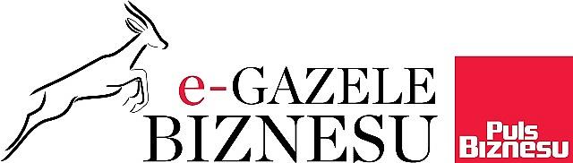 Ranking e-Gazel Biznesu