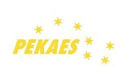 W I półroczu 2012 r. PEKAES poprawił wyniki i przychody