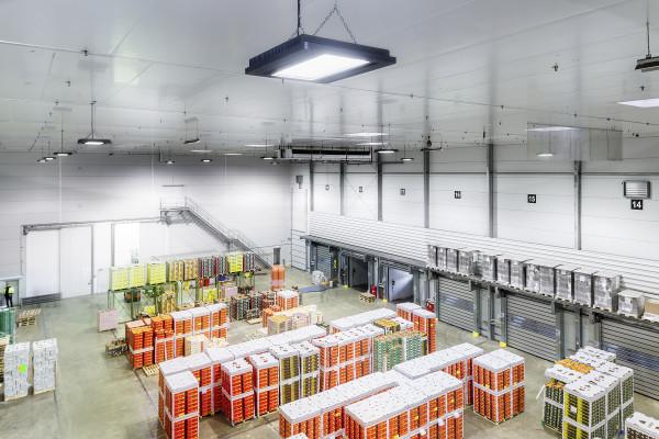 Czy oświetlenie LED w przemyśle się opłaca?
