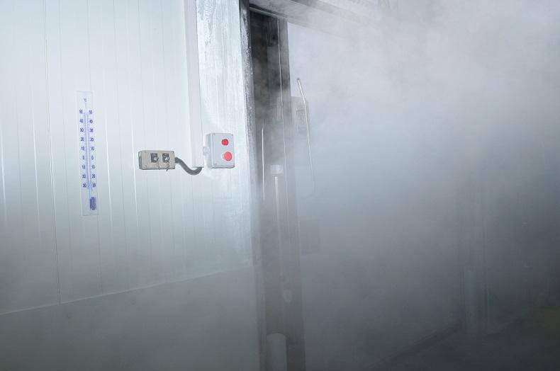 Targi logistyki w temperaturze kontrolowanej