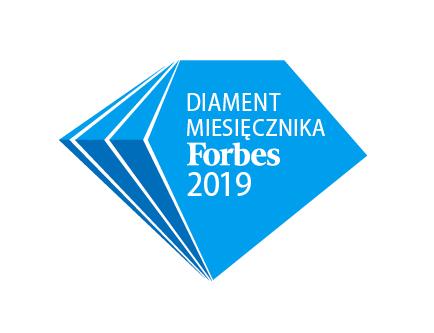 Logistyczny diament z Łodzi