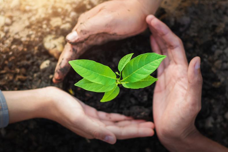 W czołówce zrównoważonych firm na świecie
