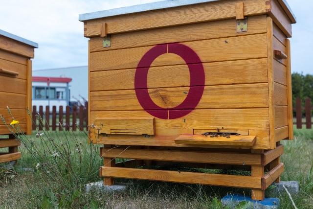 hodowli pszczół w parkach Segro