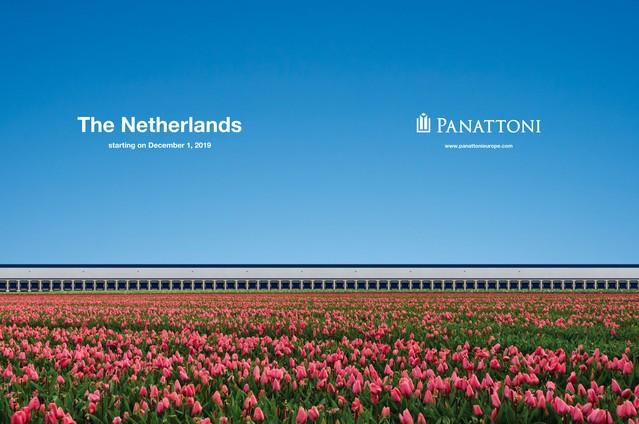 Panattoni w kraju tulipanów