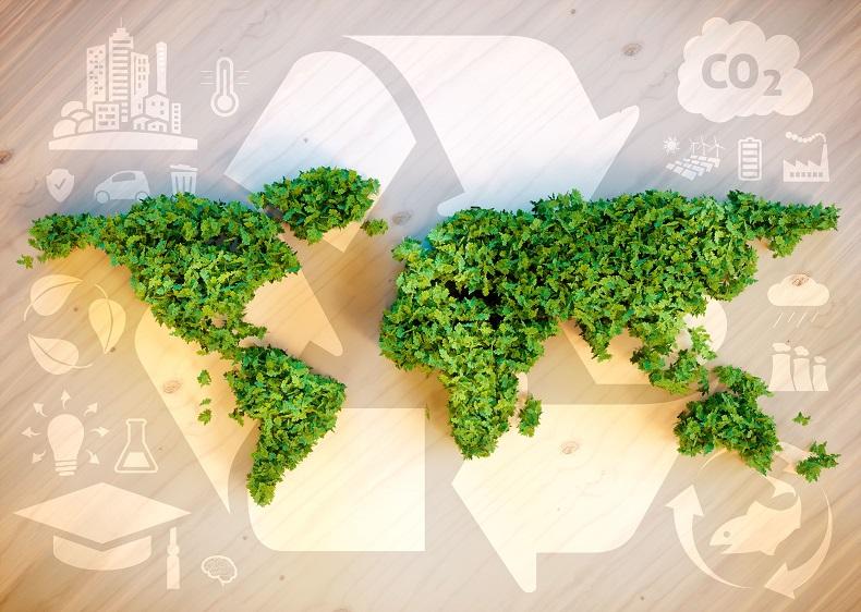 Pierwszy rok realizacji celów zrównoważonego rozwoju 2025