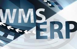 ERP czy WMS, optymalne rozwiązanie dla magazynu