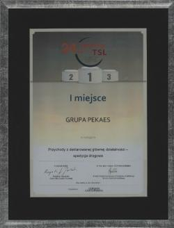 Dyplom dla PEKAES