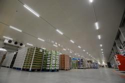 Rozwiązania dla logistyki świeżych produktów