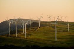 Na ścieżce wysokiego wzrostu w sektorze energii odnawialnej